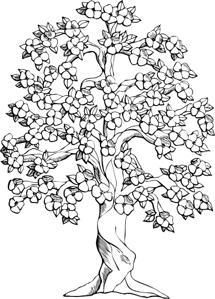 arbol araguaney Colouring Pages (page 2)