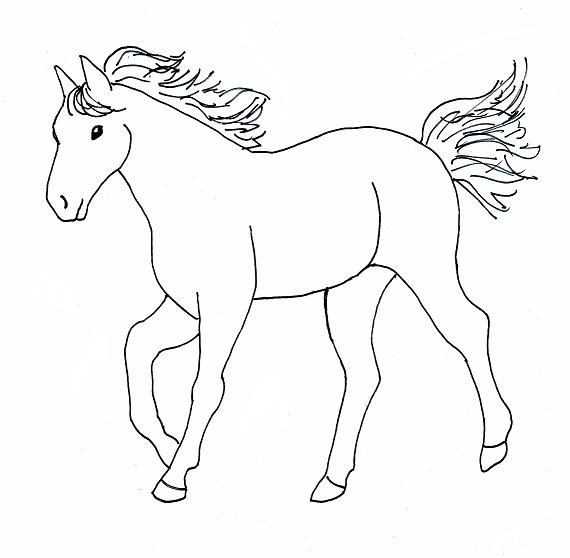 How To Draw Paul Revere On A Horse Step By Step - How to draw wild ...